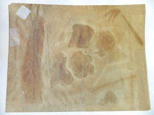 huile-sur-papier-thompson-verso-avant_atelier-restauration-papier